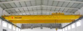 Double Girder EOT Crane 20 Ton